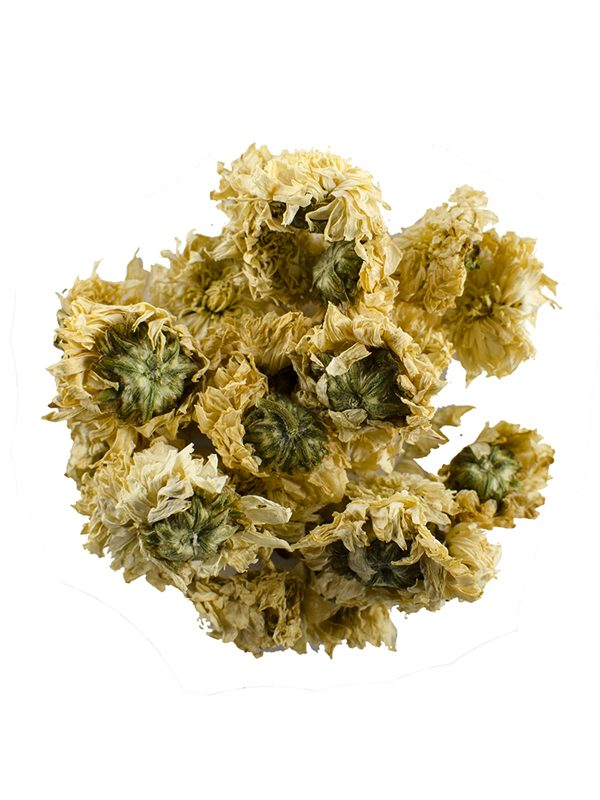 Herbs Chrysanthemum Tea Tisane, herbal tea, herbal chrysanthemum tea, chrysanthemum tea, loose leaf tea, loose leaf herbal tea, loose leaf chrysanthemum tea, zentea, zentea loose leaf herbal tea